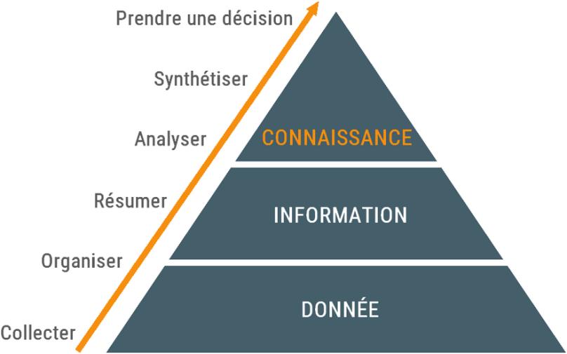 Pyramide de la Connaissance - Vitaloweb - Conseil & Formation - Communication et Gestion de l'information - Amiens Hauts de France